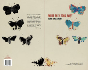 what_they_took_away_cover1