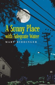 Biddinger-Cover-Sunny-Place-250x386